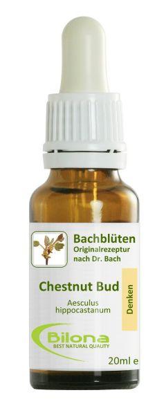 BILONA Chestnut Bud - Thema:Einsicht. # 7