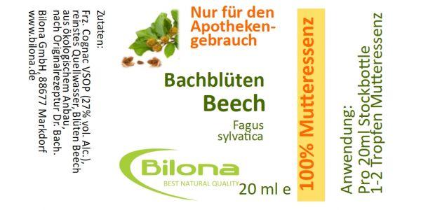 Beech Bachblüten-MUTTERESSENZ, 20 ml